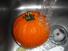 Rinse cycle for pumpkin number one.